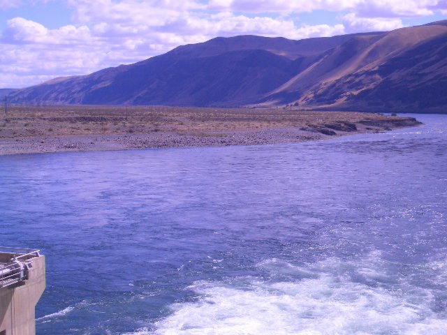 priest-rapids-dam-tailrace-photo-3